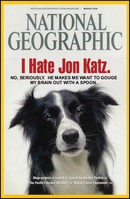 Jon katz divorce
