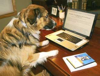 A Canine Genius?