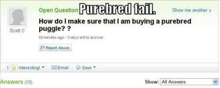 purebredfail