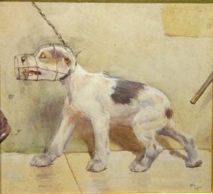muzzleddogalden