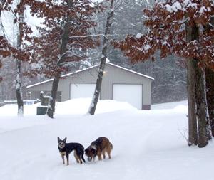 snowdogstc08