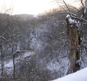 snowyard08_2
